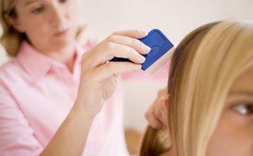Head Lice At School